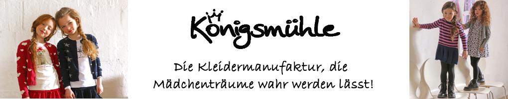 Königsmühle Winter16